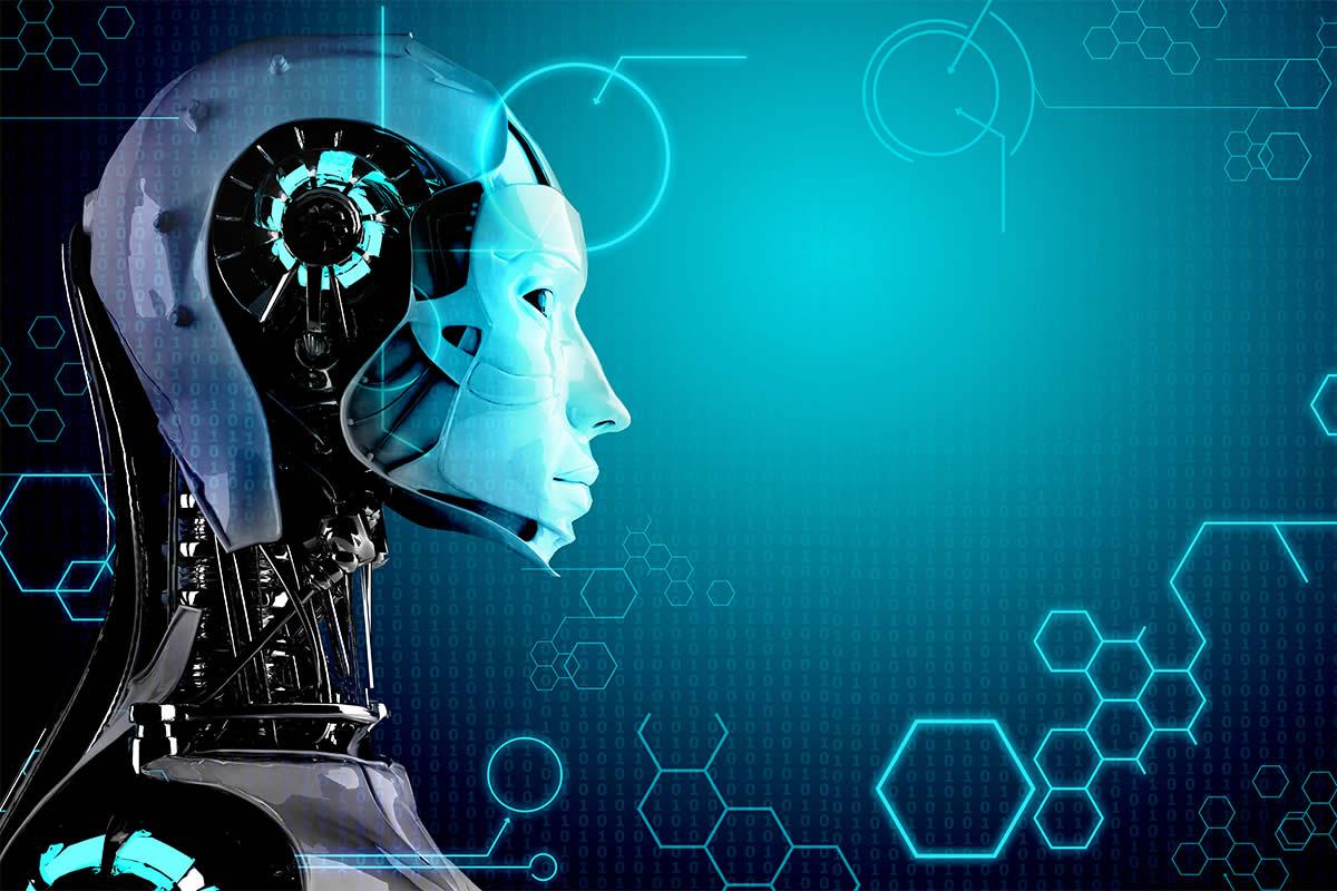 Humanoid Robots at SIRE 2016